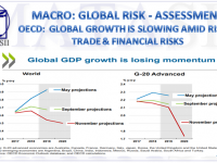 11-22-18-MACRO-GLOBAL RISK-ASSESSMENT-OECD - Global Growth Is Slowing-1