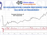 05-16-19-TP-DE-DOLLARIZATION-Canada Shockingly Dumps $12.5B in US Treasuries-1
