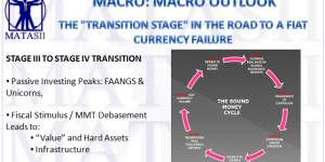 """THE """"TRANSITION STAGE"""" IN THE ROAD TO A FIAT CURRENCY FAILURE"""